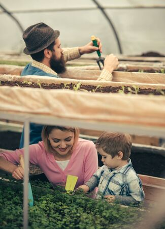 family business. family business in agriculture industry. happy family has business in green house. family business concept. sealing a deal.