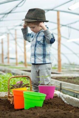 small farmer boy. small farmer boy working in greenhouse. small farmer boy in fashion hat. garden work with small farmer boy. turning plants into profit.
