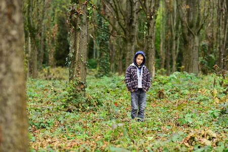Feel the nature. Little boy play in forest. Little child have forest walk. Adorable boy on forest landscape. The farther into the forest, the thicker the trees