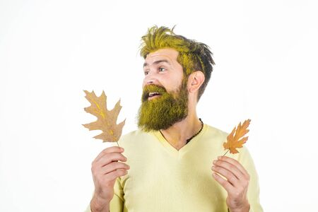 Autumn man in autumn mood posing with yellow leaves - banner with space for text. Autumn sale. Autumn clothing and color trends for man. Stockfoto