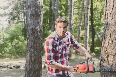 Lumberjack worker with chainsaw in the forest. Professional lumberjack holding chainsaw in the forest. Lumberjack holding the chainsaw. Stock Photo