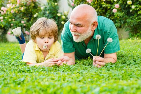 Happy family father and child on meadow with a kite in the summer on green grass. Cute boy with dad playing outdoor. Retirement parent. Two generation - weekend together. Stock Photo