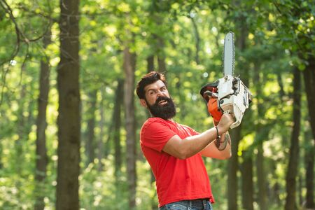 Lumberjack worker with chainsaw in the forest. Lumberjack worker walking in the forest with chainsaw. Deforestation. A handsome young man with a beard carries a tree.