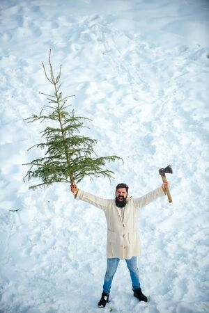 Young man lumberjack is cutting Christmas tree in the wood. Young woodcutter winter portrait. Man with beard bears home a Christmas tree. Man lumberman with Christmas tree in winter park.