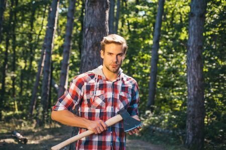 Illegal logging continues today. Logging. Agriculture and forestry theme. Strong man lumberjack with an ax in a plaid shirt. Handsome man lumberjack with a large ax examines the tree before felling.