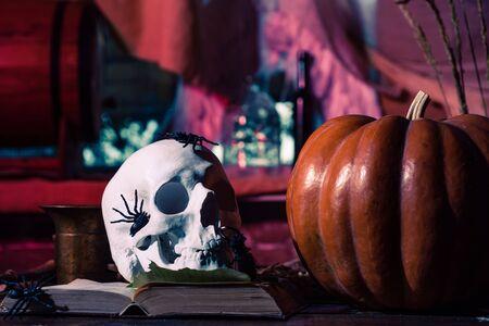 Halloween decorations. Pumpkin with skull. Happy Halloween Weekends. Halloween party in living room with pumpkins, jack-o-lantern. 写真素材