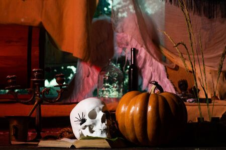 Skull with bug. Preparation Halloween holidays. Halloween party in living room with pumpkins, jack-o-lantern. Horror at old wooden home.