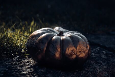 The symbol of Halloween - Golden pumpkin. Halloween decor against green background.
