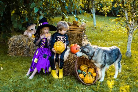 Halloween on countryside. Kids smiling on a Halloween party. Cute children daughter and son making funny faces with a pumpkin. Stock Photo