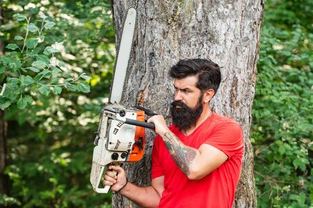 Chainsaw. Woodcutter with axe or chainsaw in the summer forest. Lumberjack on serious face carries chainsaw. Lumberjack concept.