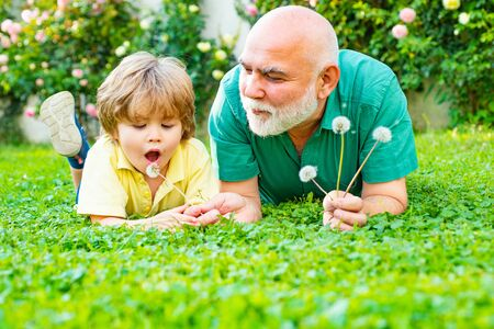 Happy family father and child on meadow with a kite in the summer on green grass. Cute boy with dad playing outdoor. Grandfather with son in park.