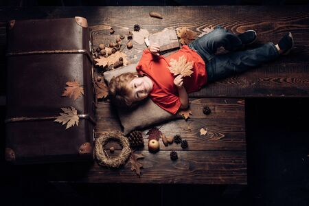 Blonde little boy resting with leaf on stomach lies on wooden floor in autumn leaves. Little cute boy lies on a wooden floor with autumn leaves and read book. Kid having fun with Leaf fall.