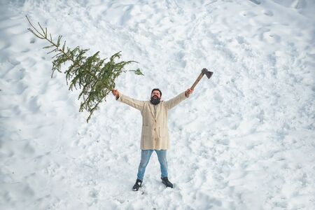 A handsome lumber with a beard carries a Christmas tree. Man is going to cut a Christmas tree. Santa Claus with Christmas tree. Santa Claus with Christmas tree