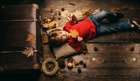 Little child boy lies on a warm blanket dreams of warm autumn. Cute little child boy are getting ready for autumn. Blonde little boy resting with leaf on stomach lies on wooden floor in autumn leaves.