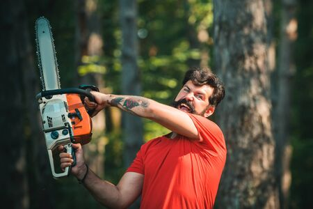 Illegal logging continues today. Woodworkers lumberjack. The Lumberjack working in a forest. Deforestation is a major cause of land degradation and destabilization of natural ecosystems. Stock Photo