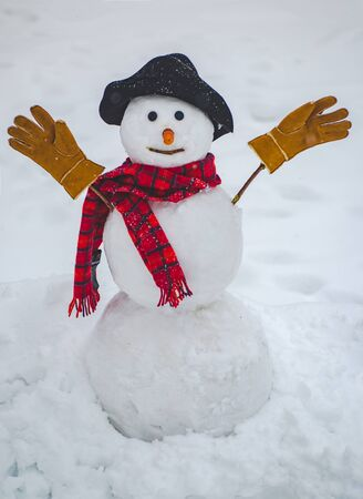 Happy winter time. Snowman isolated on snow background. Merry Christmas and Happy Holidays.