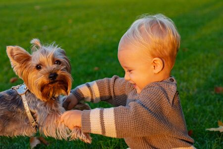 Happy baby boy having fun playing with little puppy dog in autumn park. Smiling baby kid with blonde hair plays at beautiful sunny autumnal evening. Childhood concept Фото со стока