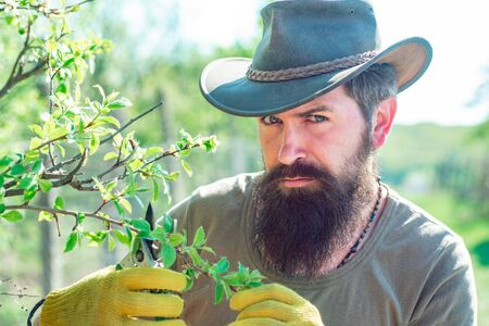 Portrait of bearded farmer. Grafting branches. Professional Gardener at Work - close up portrait. Reklamní fotografie