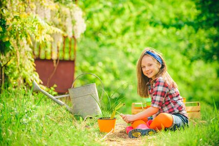 Kid harvesting beets in an urban communal garden. Toddler are working in flowers park. Become little farmer. Flower care and watering. Reklamní fotografie