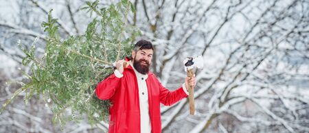 Christmas lumberjack with axe and Christmas tree. Bearded Man cutting Christmas tree. Woodcutter with axe in the winter forest. Young man lumberjack is cutting Christmas tree in the wood.