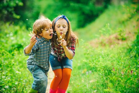 Kids walking in summer field. Little friends blowing dandelion seeds together in a park. Smiling and laughing kids having good time outside on summer warm day.