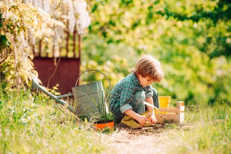 Happy little farmer having fun on spring field. Planting flowers. Son planting flowers in ground. Child Farmer planting in the vegetable garden
