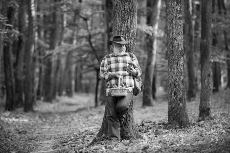 Old man walking. Grandpa Pensioner. Senior hiking in forest. Summer and hobbies. Old bearded mushroomer in summer forest. Foto de archivo