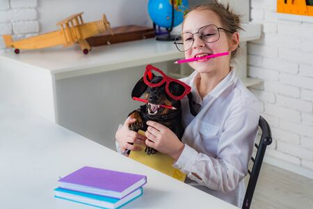 Back to school idea concept with funny dog holding pencil. Smart and clever dog with pencil and glasses. Stock Photo