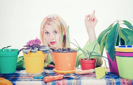 Beautiful young woman with flover pot. Watering flowers. Gardener woman planting flowers. Cute blonde gardening at isolated background.