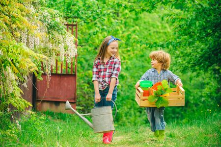 Children farmers hold box and watering can. Cute toddler girl and boy working on farm outdoors.