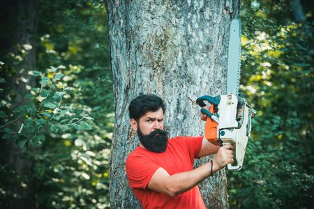 A handsome young man with a beard carries a tree. Deforestation is a major cause of land degradation and destabilization of natural ecosystems.