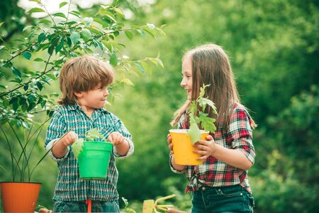 Planting flowers in pot. Pretty cute kids working and playing in beautiful garden. Little kids work in yard with garden tools and have good time.