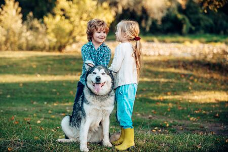 Funny Children brother and sister and dog together in park. Child 5 years old. Kids with dog walking away. Happy little kids and dog together as friends as love of animals concept.