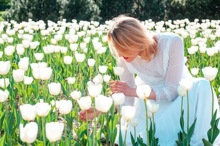 Young beautiful woman in tulip field. Womens day, 8 march. Women shading her eyes in a tulip field on a sunny day