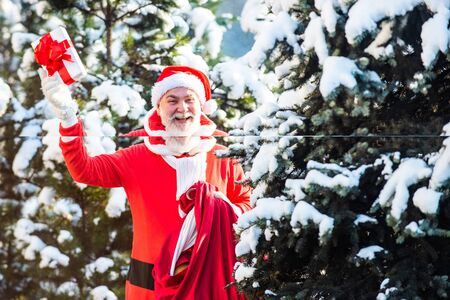 The morning before Christmas. Santa Claus in red costume walk in winter forest. Wish you merry Christmas. Father Christmas brings gifts to children.