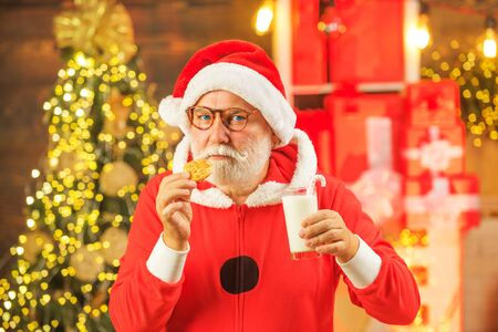 Santa holding cookie and glass of milk on Christmas tree background. Santa Claus enjoying in served gingerbread cake and milk. Happy new year. Portrait of bearded funny man in Santa costume.