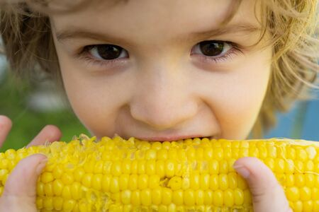 Close-up portrait of cute little child eating yellow sweet corncob corn. Farming and autumn crops concept.