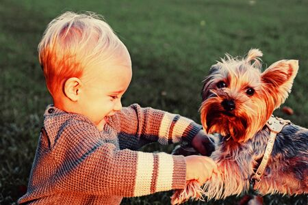 Happy baby boy having fun playing with little puppy dog in autumn park. Smiling baby kid with blonde hair plays at beautiful sunny autumnal evening. Childhood concept Reklamní fotografie