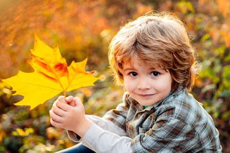 Autumn kid portrait close up. Happy child throws autumn leaves and laughs outdoors. Foto de archivo