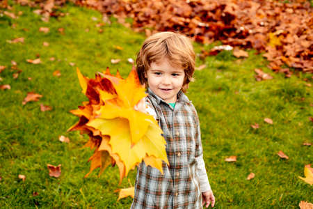 Autumn outdoor portrait of cute child boy walking in park or forest in warm knitted scarf. Stock fotó