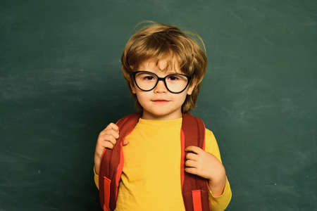 Happy school kids. Educational process. Preschooler. Schoolboy. Schoolchild. Back to school. Teachers day.