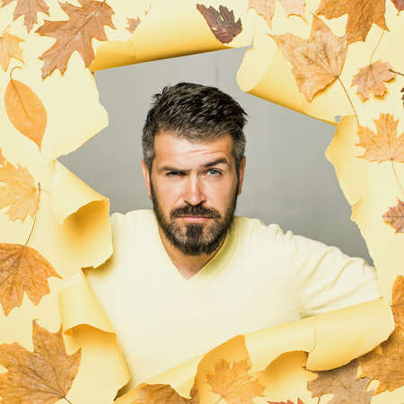 Cheerful man rejoices in autumn sales. Attractive young man in seasonal clothes with golden leaf. Autumn boy preparing for Autumn sale. Handsome funny male with background board for Copyspace.