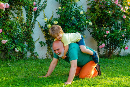 Grandfather and Grandson - piggy back ride. Healthcare family lifestyle. Happy family father and child on meadow with a kite in the summer on green grass