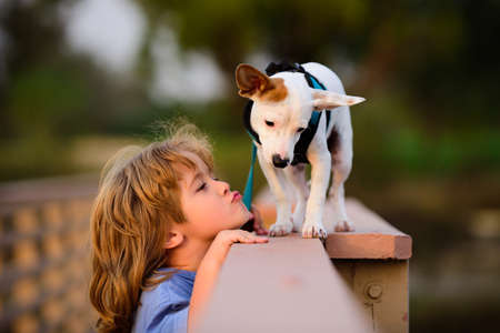 Funny kids face. Child lovingly embraces and kisses his pet dog.