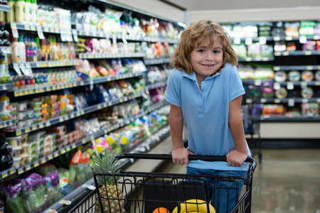 Cute child at grocery or supermarket with goods in shopping trolley.