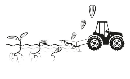 Farmer planting crops in the field and germinating seeds