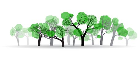 amount: contours of the spring woods with a small amount of green leaves