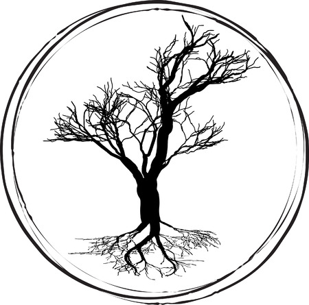 Black and white drawing of deciduous tree. Black silhouette on a white background. Large krone root system. Isolated. Vector Image. Illustration