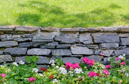 Flowers, green grass and retaining wall gray brick Foto de archivo