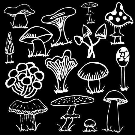 grebe: Set of white silhouettes of cute cartoon mushrooms isolated on black background. Illustration
